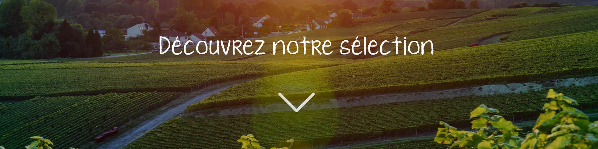 slide_selection.jpg